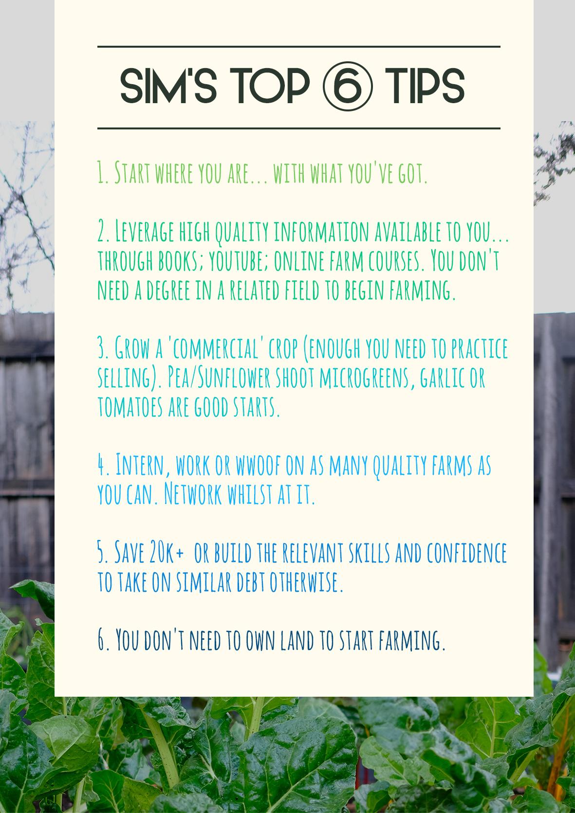 sim's top 6 tips